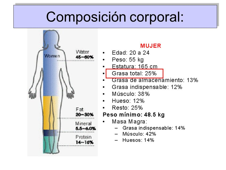 Composición corporal: