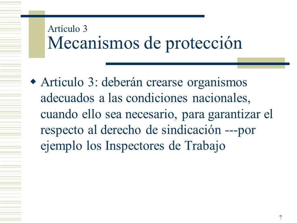 Artículo 3 Mecanismos de protección