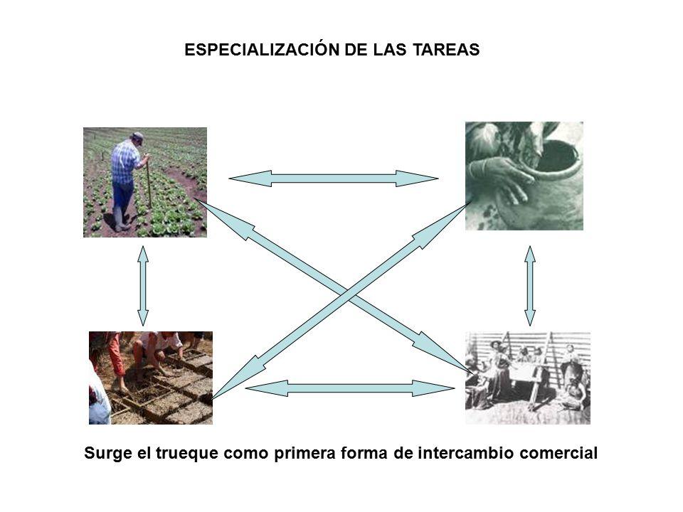 ESPECIALIZACIÓN DE LAS TAREAS