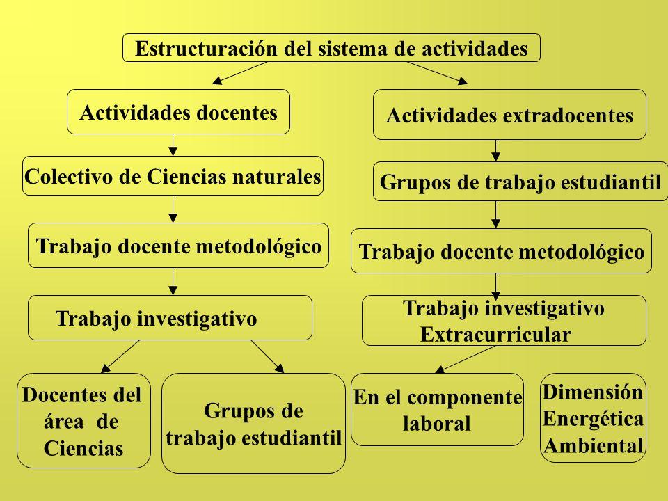 Estructuración del sistema de actividades