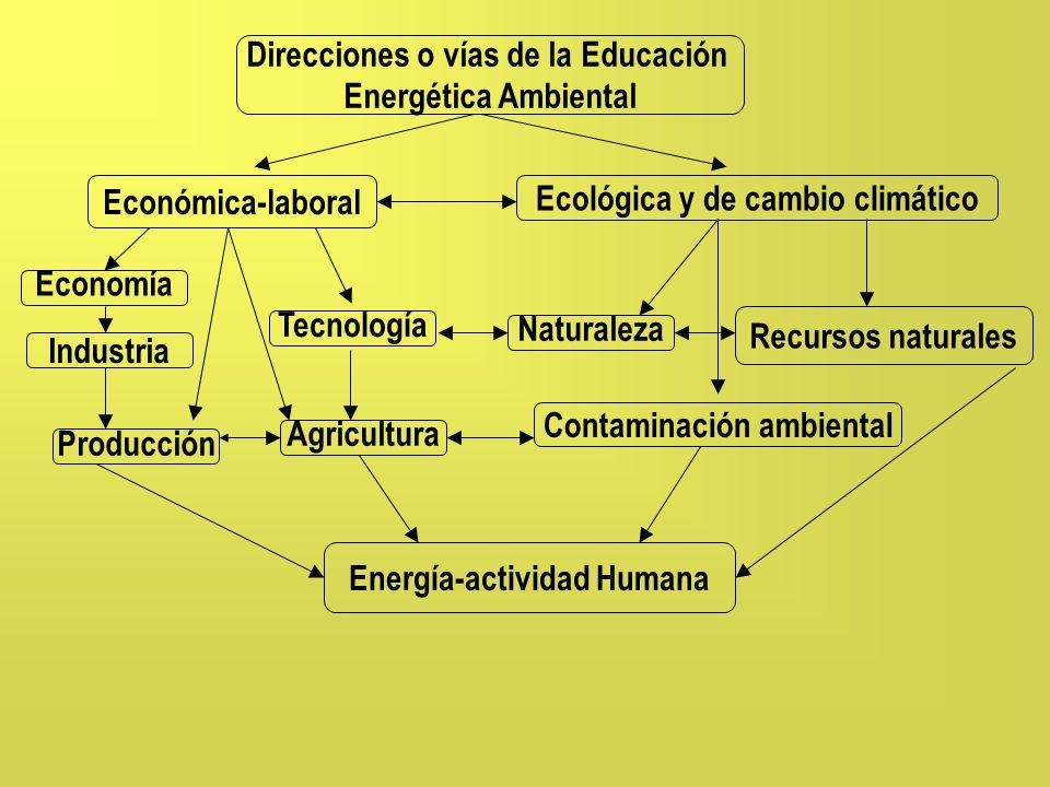 Direcciones o vías de la Educación Energética Ambiental