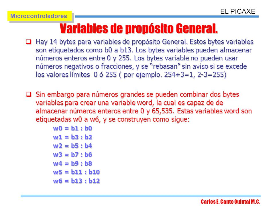 Variables de propósito General.