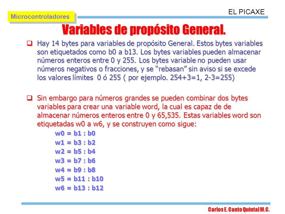 Variables de propósito General.