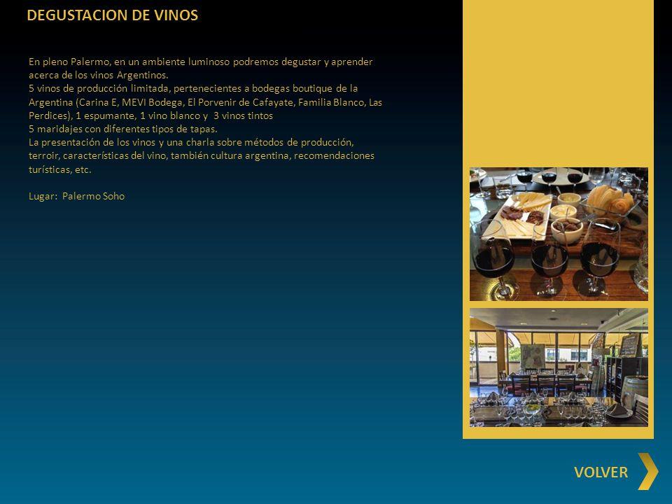 DEGUSTACION DE VINOS VOLVER