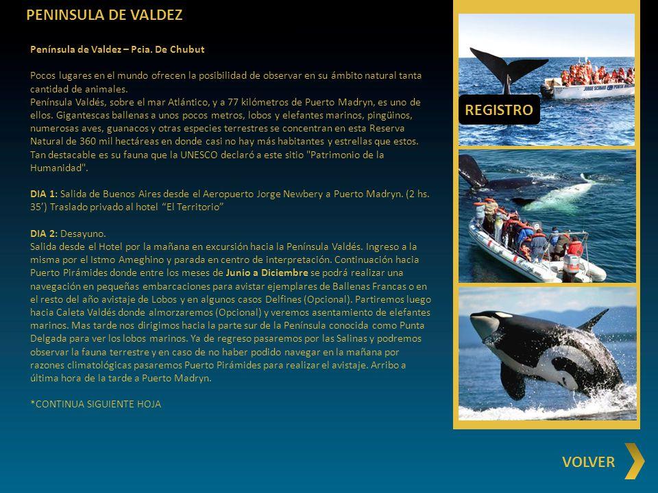 PENINSULA DE VALDEZ REGISTRO VOLVER