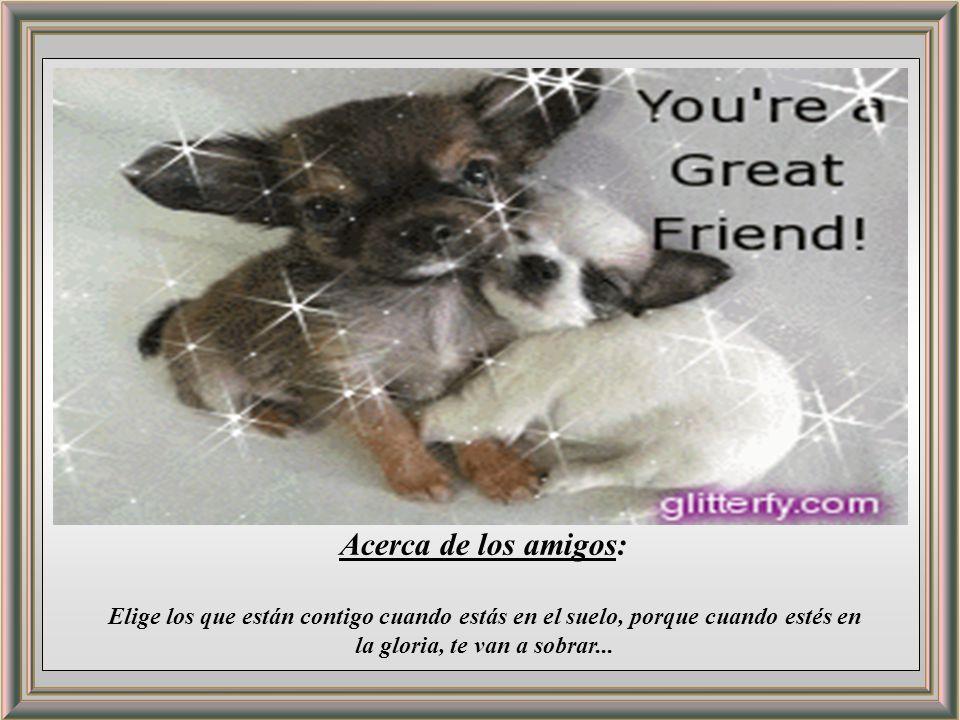 Acerca de los amigos: Elige los que están contigo cuando estás en el suelo, porque cuando estés en la gloria, te van a sobrar...