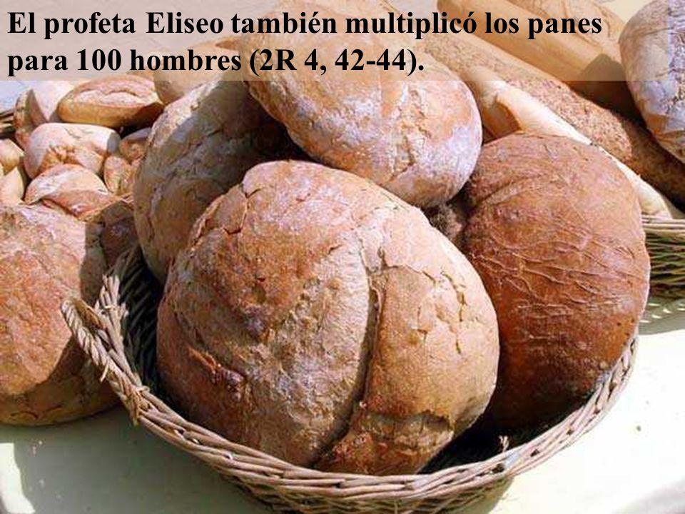 El profeta Eliseo también multiplicó los panes para 100 hombres (2R 4, 42-44).