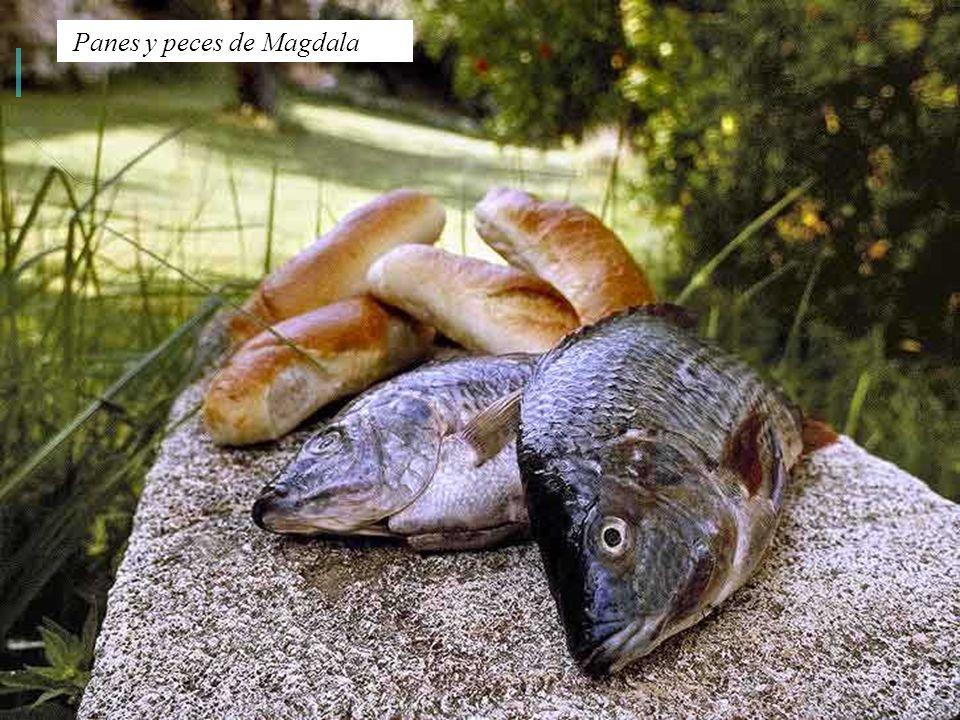 Panes y peces de Magdala