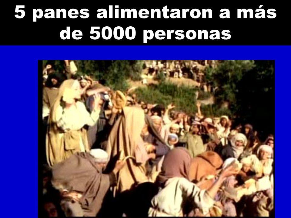 5 panes alimentaron a más de 5000 personas