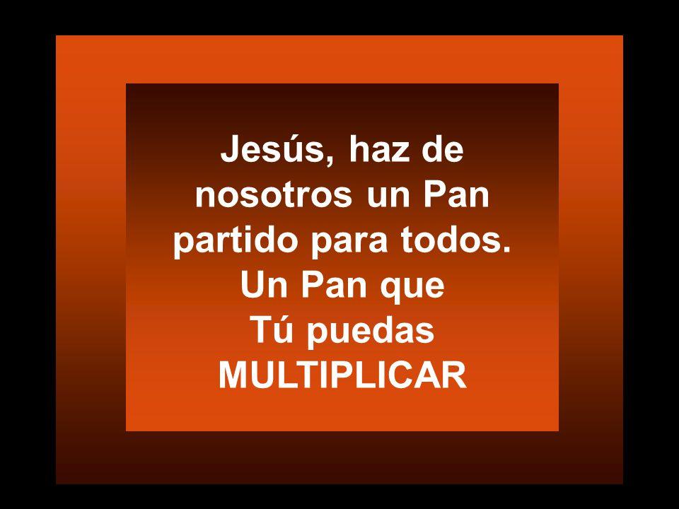 Jesús, haz de nosotros un Pan partido para todos