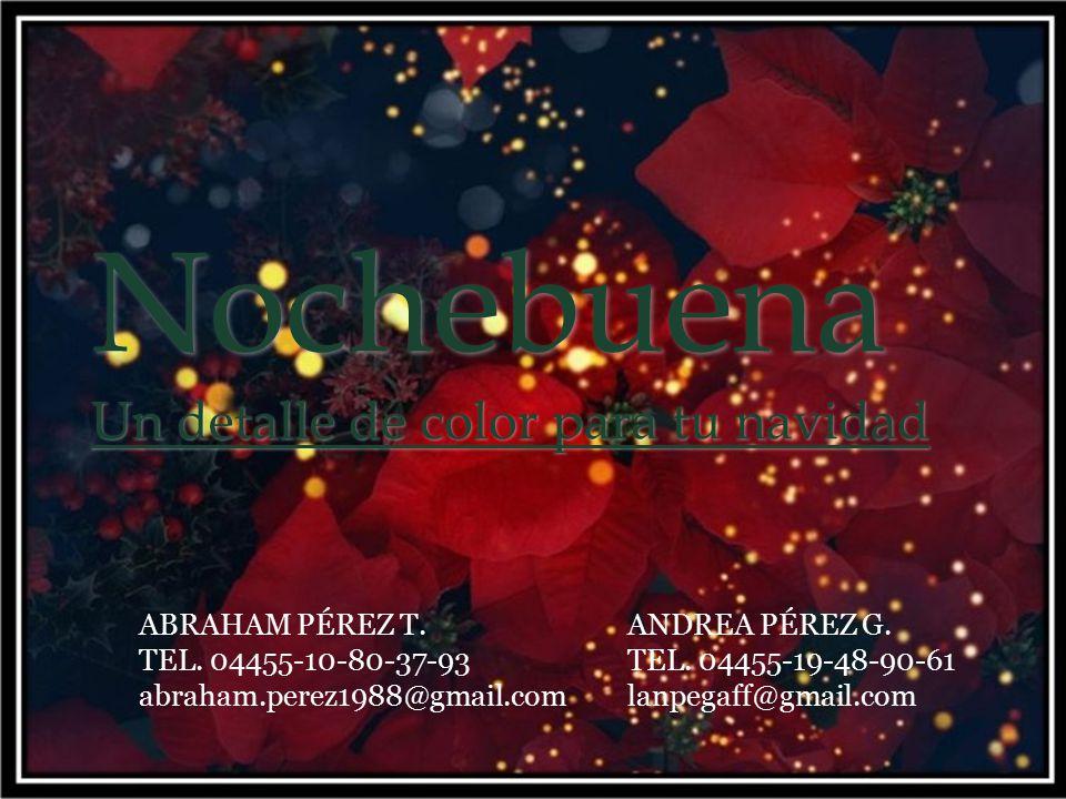 Nochebuena Un detalle de color para tu navidad