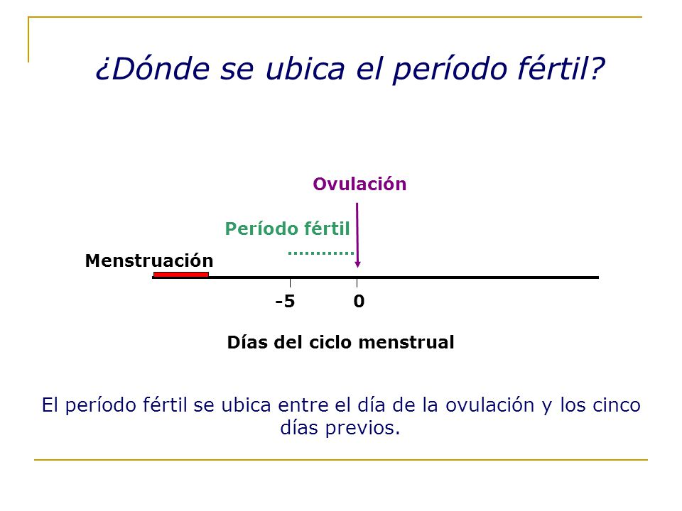 Días del ciclo menstrual