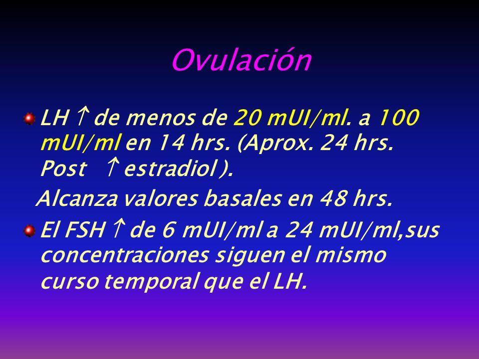 Ovulación LH  de menos de 20 mUI/ml. a 100 mUI/ml en 14 hrs. (Aprox. 24 hrs. Post  estradiol ).