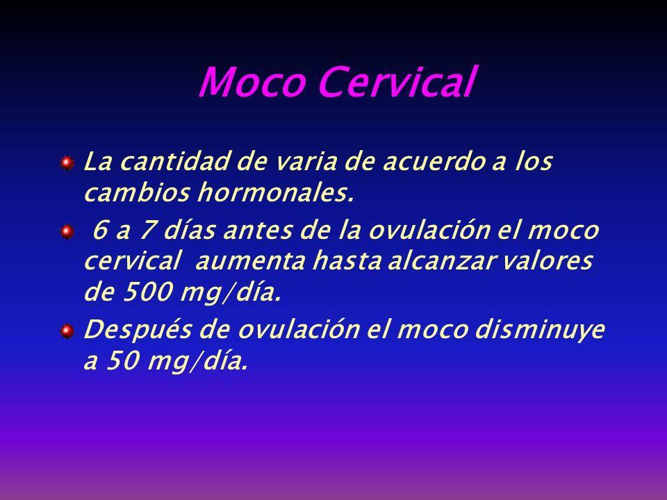 Moco Cervical La cantidad de varia de acuerdo a los cambios hormonales.