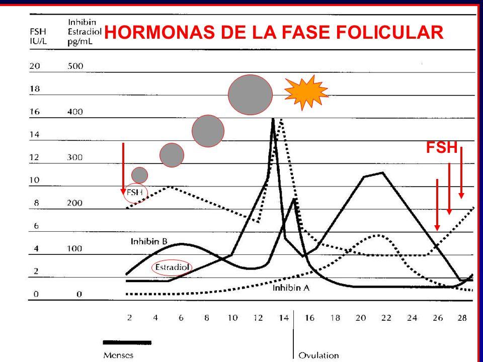 HORMONAS DE LA FASE FOLICULAR