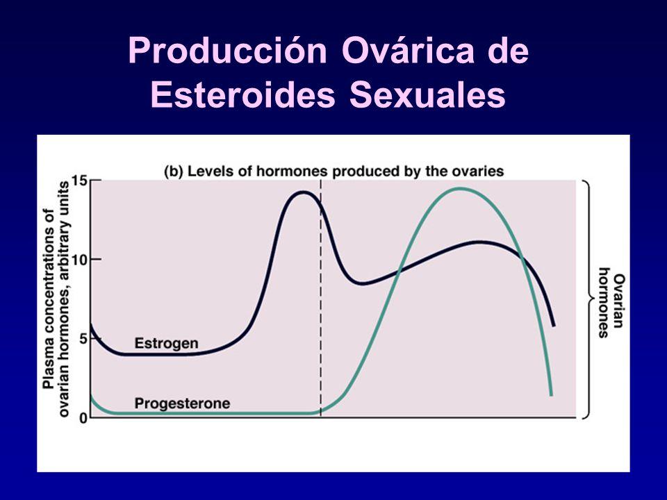 Producción Ovárica de Esteroides Sexuales