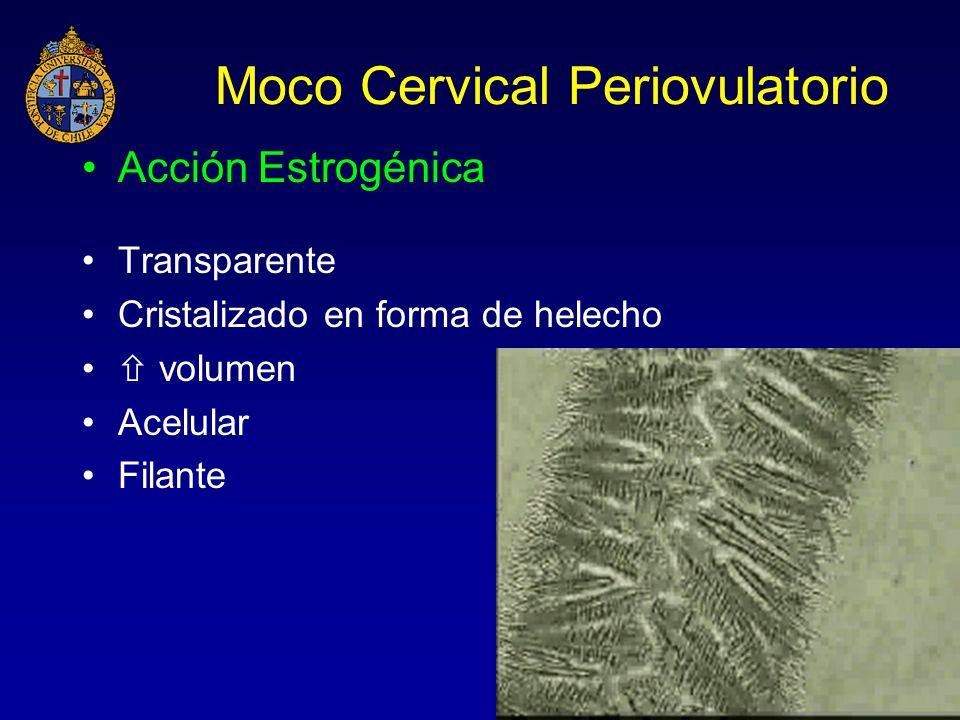 Moco Cervical Periovulatorio