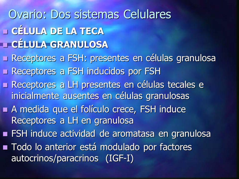 Ovario: Dos sistemas Celulares