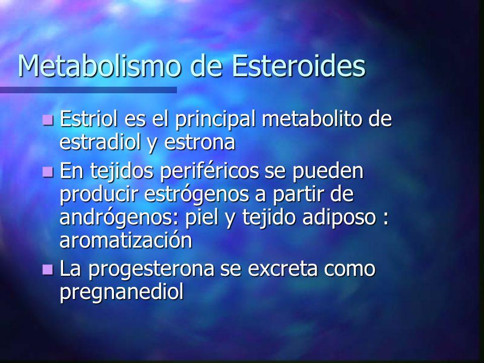 Metabolismo de Esteroides