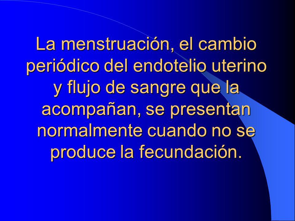 La menstruación, el cambio periódico del endotelio uterino y flujo de sangre que la acompañan, se presentan normalmente cuando no se produce la fecundación.