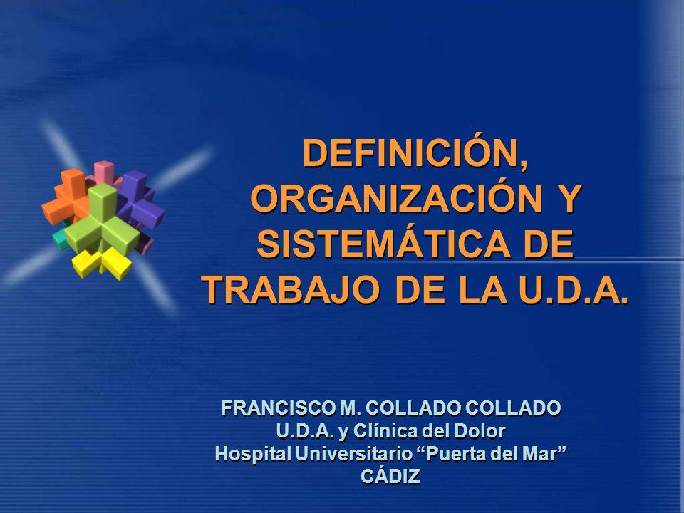 DEFINICIÓN, ORGANIZACIÓN Y SISTEMÁTICA DE TRABAJO DE LA U.D.A.