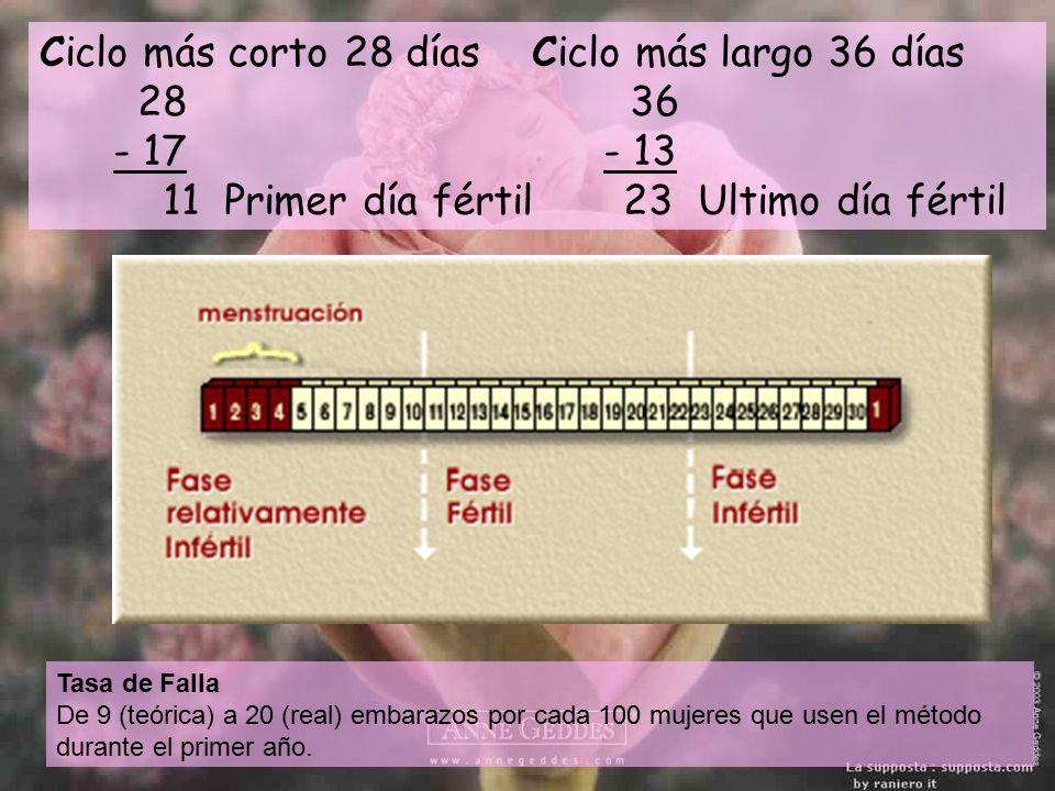 Ciclo más corto 28 días Ciclo más largo 36 días 28 36 - 17 - 13 11 Primer día fértil 23 Ultimo día fértil