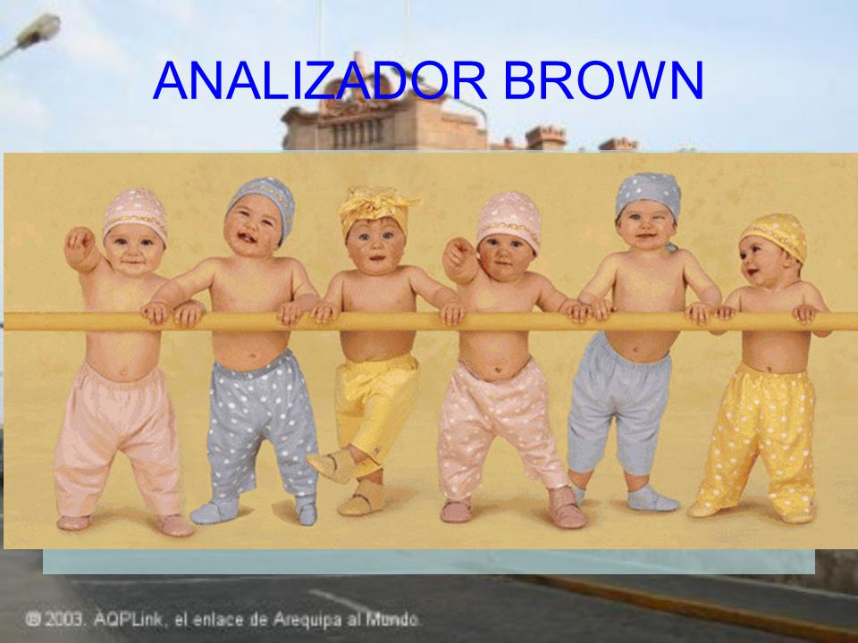 ANALIZADOR BROWN