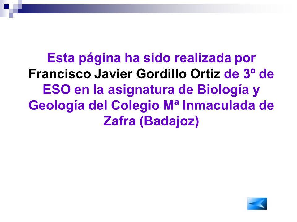Esta página ha sido realizada por Francisco Javier Gordillo Ortiz de 3º de ESO en la asignatura de Biología y Geología del Colegio Mª Inmaculada de Zafra (Badajoz)