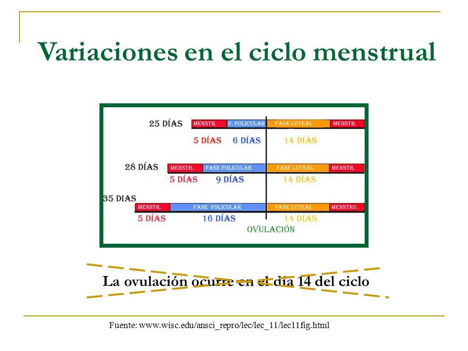 Variaciones en el ciclo menstrual