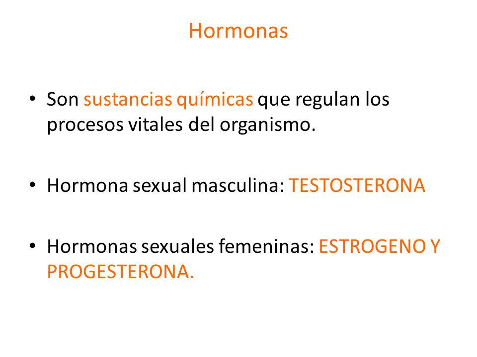 Hormonas Son sustancias químicas que regulan los procesos vitales del organismo. Hormona sexual masculina: TESTOSTERONA.