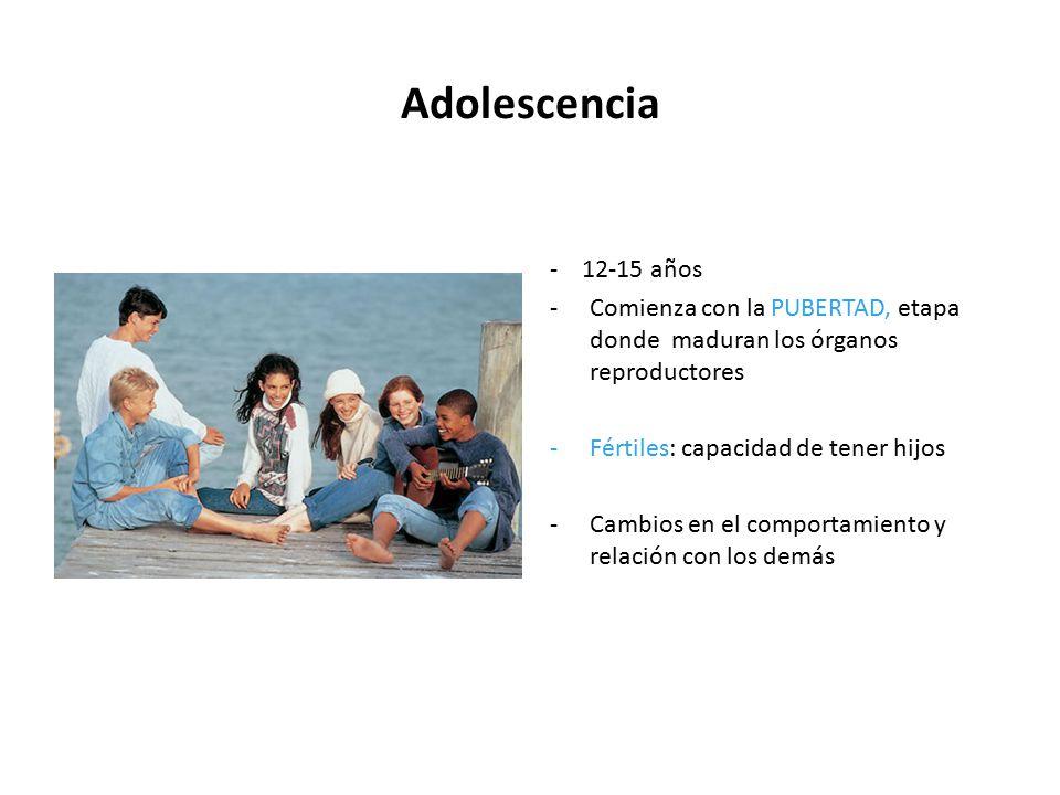 Adolescencia - 12-15 años. Comienza con la PUBERTAD, etapa donde maduran los órganos reproductores.
