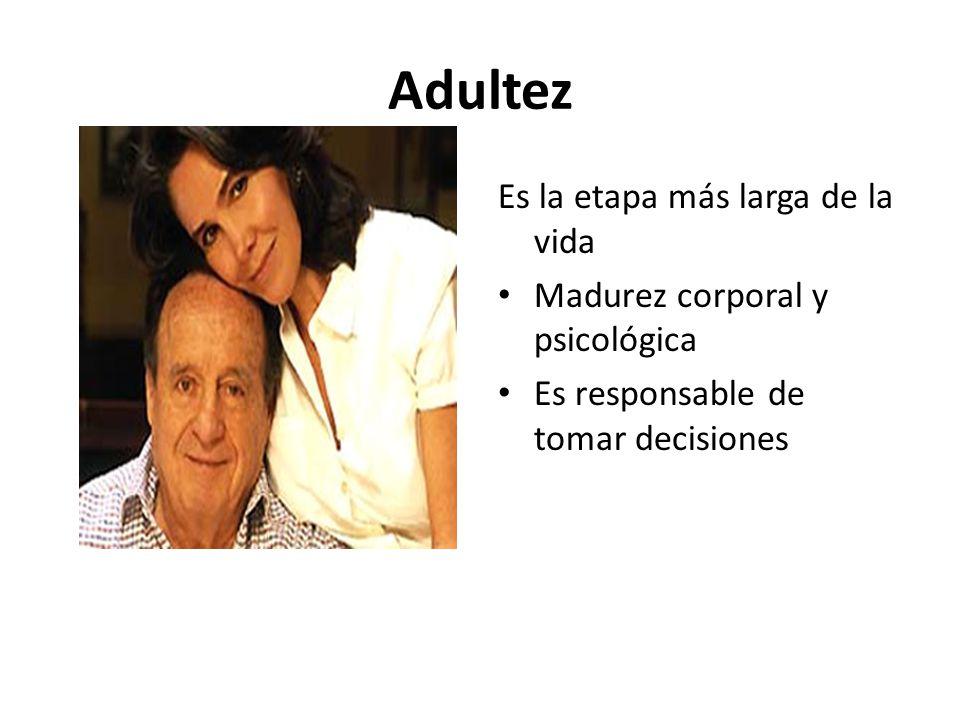 Adultez Es la etapa más larga de la vida