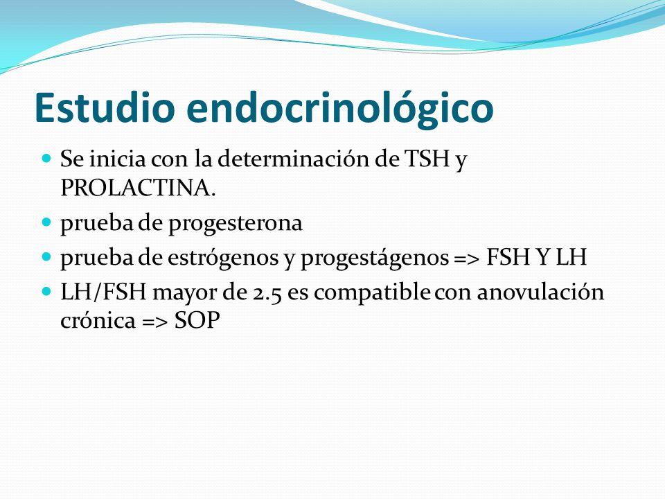 Estudio endocrinológico