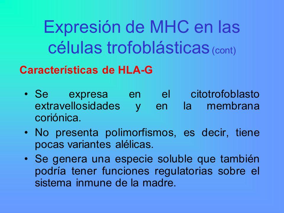 Expresión de MHC en las células trofoblásticas (cont)