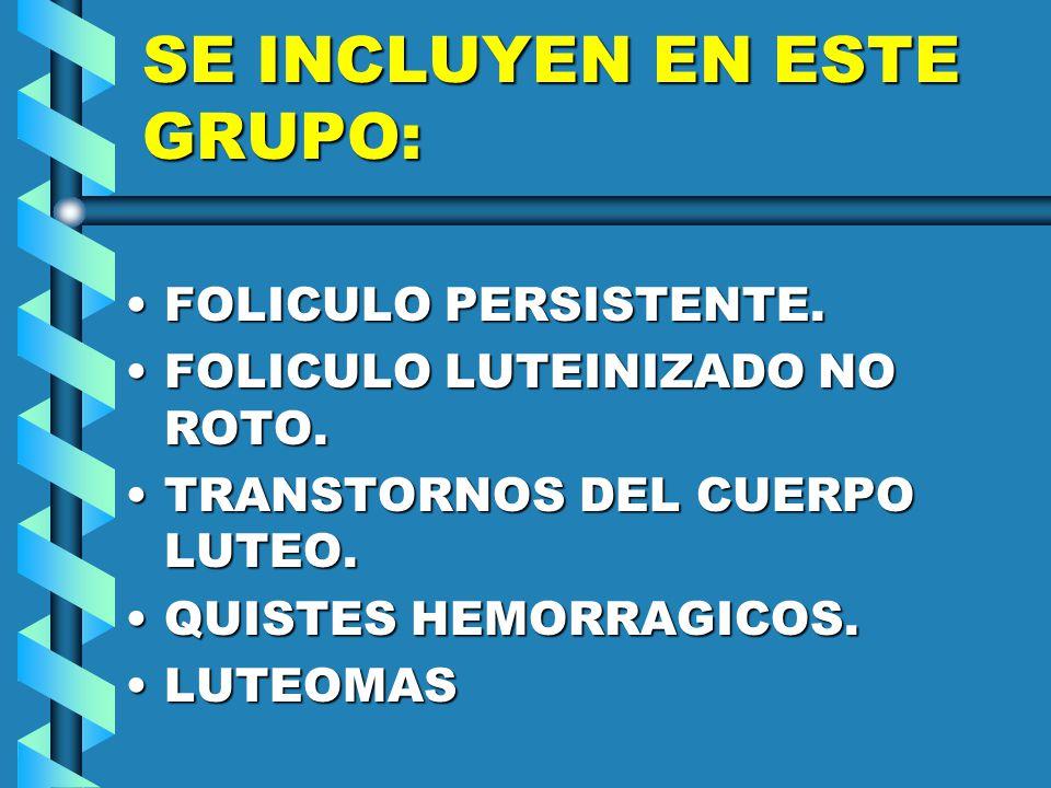 SE INCLUYEN EN ESTE GRUPO: