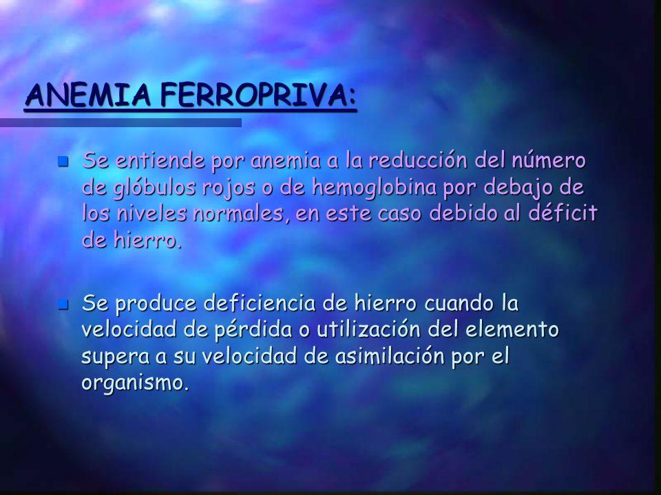 ANEMIA FERROPRIVA: