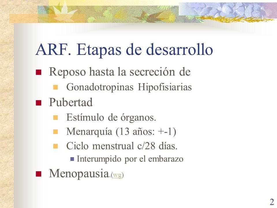 ARF. Etapas de desarrollo