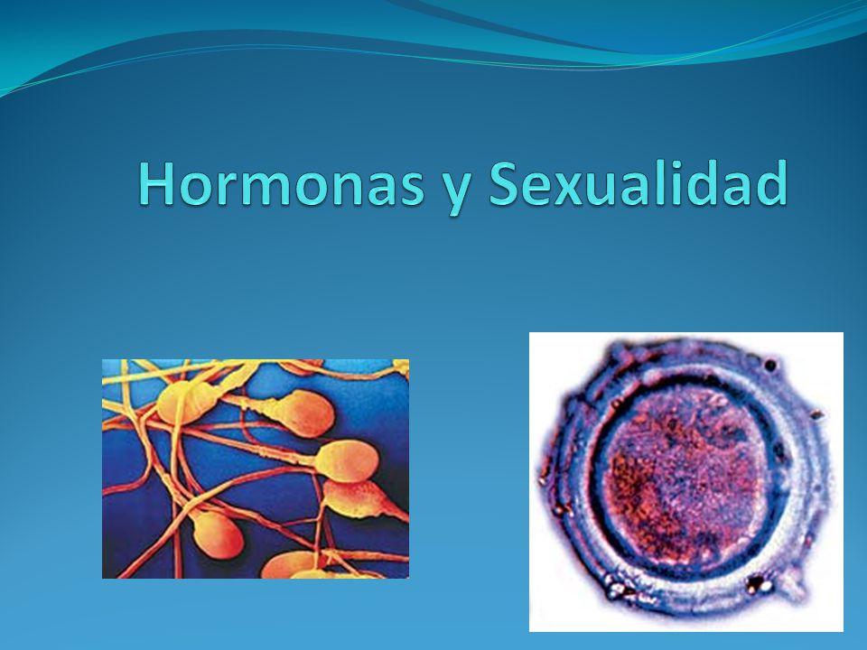 Hormonas y Sexualidad