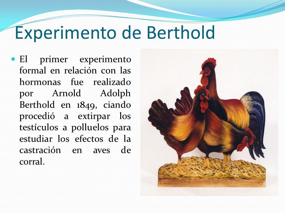 Experimento de Berthold