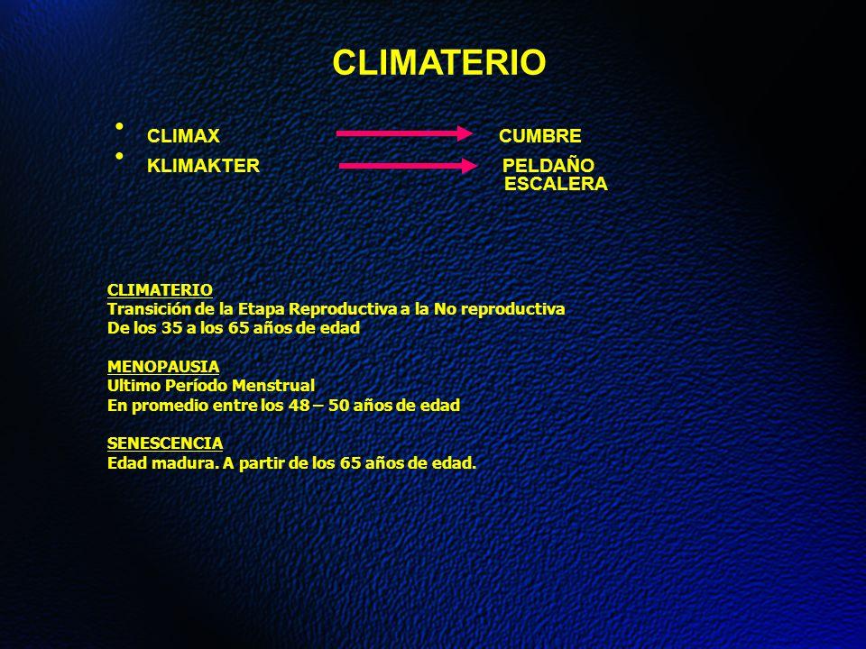 CLIMATERIO CLIMAX CUMBRE KLIMAKTER PELDAÑO ESCALERA CLIMATERIO