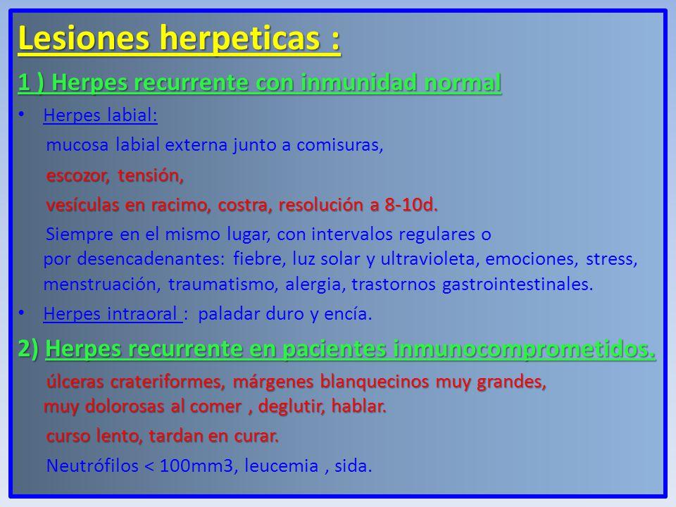 Lesiones herpeticas : 1 ) Herpes recurrente con inmunidad normal