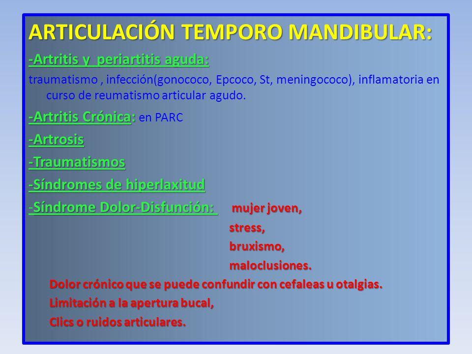 ARTICULACIÓN TEMPORO MANDIBULAR: