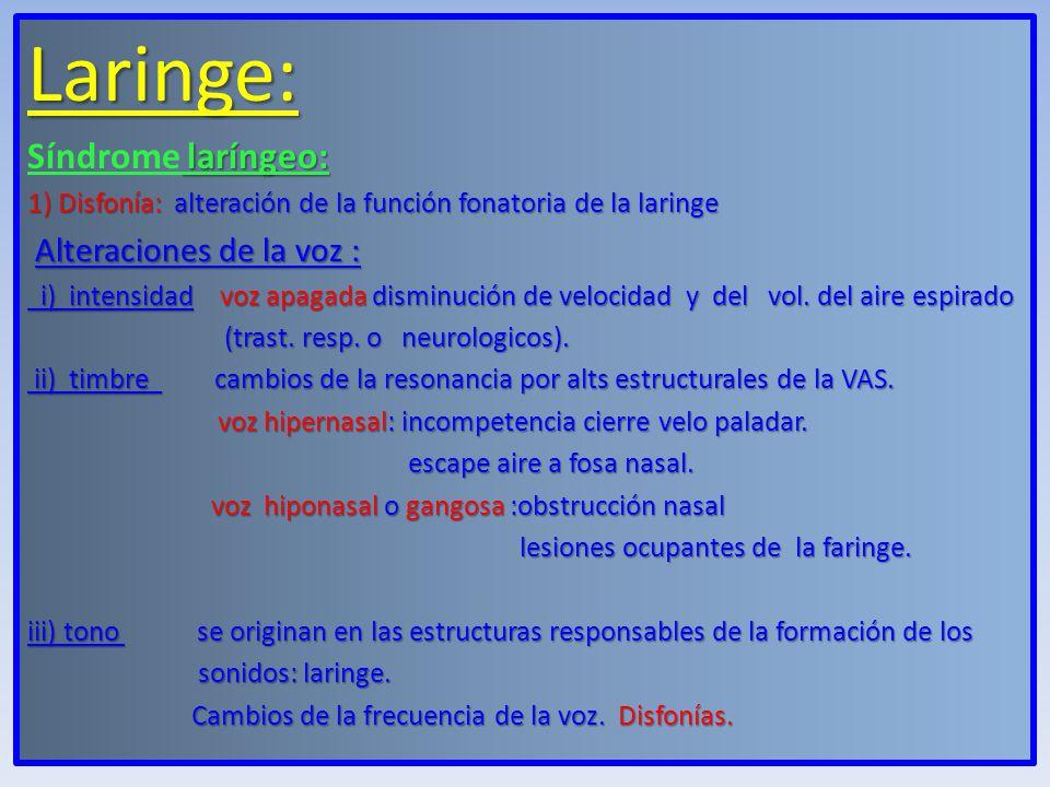 Laringe: Síndrome laríngeo: Alteraciones de la voz :
