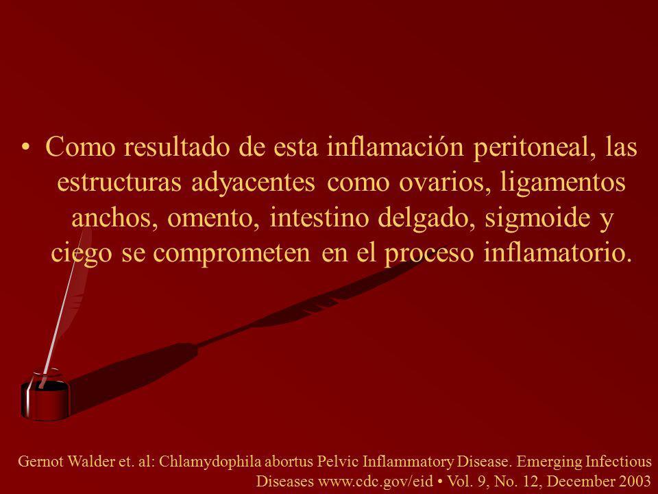 Como resultado de esta inflamación peritoneal, las estructuras adyacentes como ovarios, ligamentos anchos, omento, intestino delgado, sigmoide y ciego se comprometen en el proceso inflamatorio.