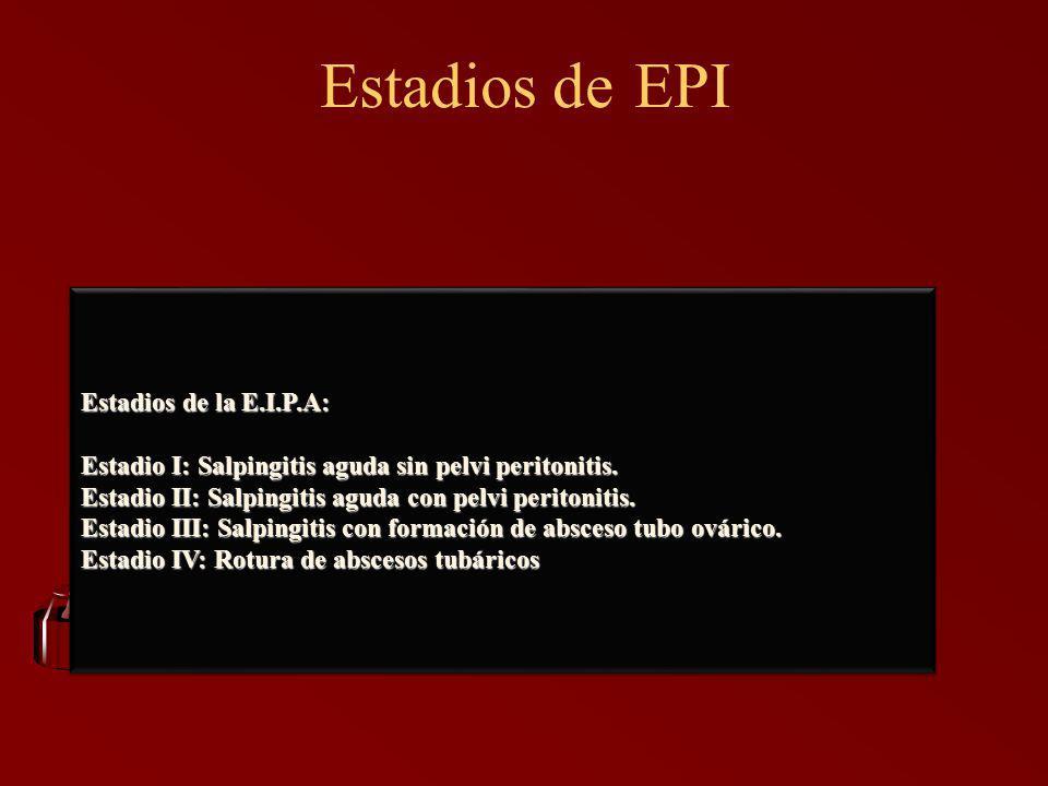 Estadios de EPI Estadios de la E.I.P.A: