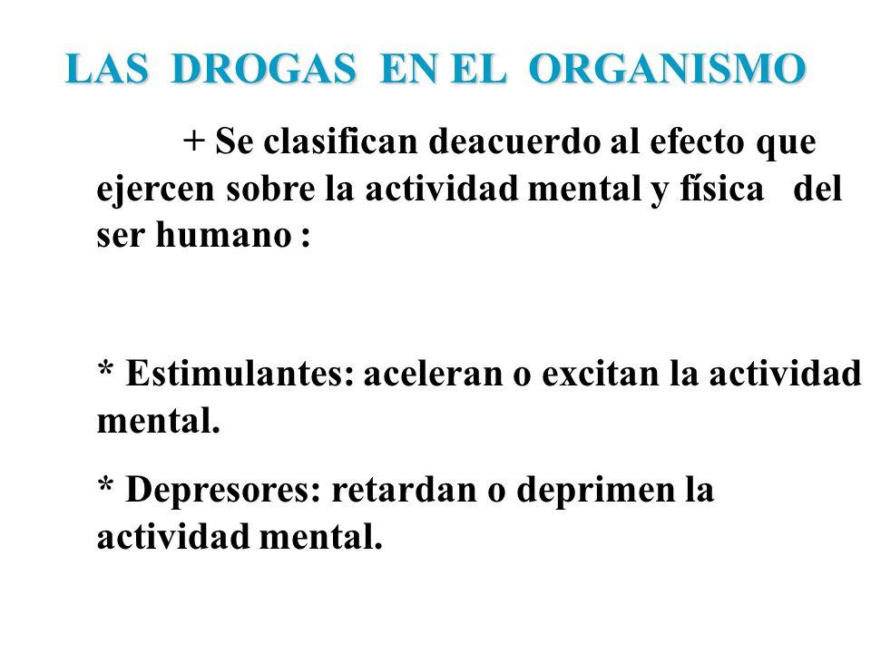 LAS DROGAS EN EL ORGANISMO