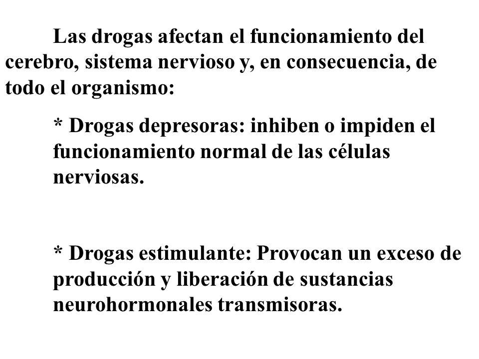 Las drogas afectan el funcionamiento del cerebro, sistema nervioso y, en consecuencia, de todo el organismo: