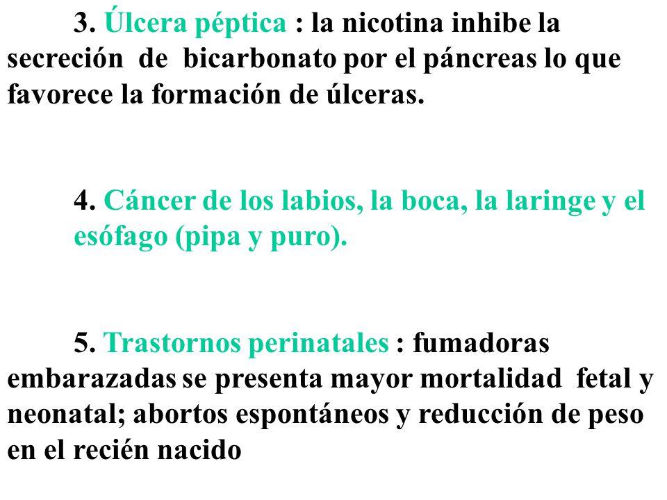 3. Úlcera péptica : la nicotina inhibe la secreción de bicarbonato por el páncreas lo que favorece la formación de úlceras.