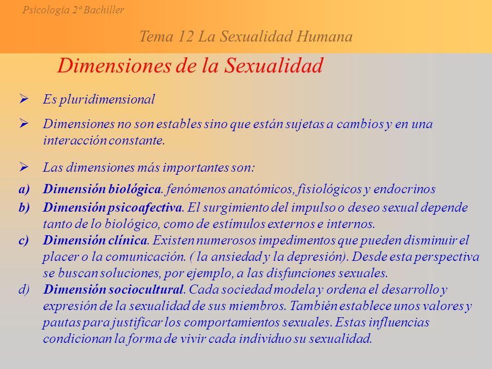 Dimensiones de la Sexualidad