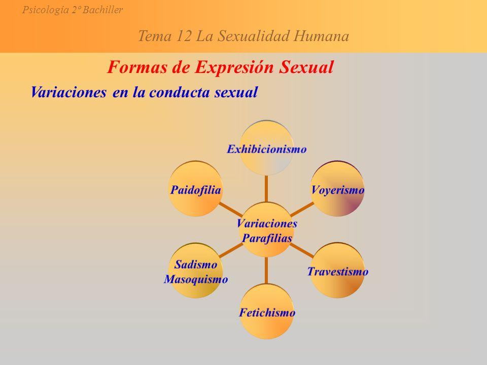 Formas de Expresión Sexual